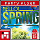 Spring Party Flyer - Vol.3 - GraphicRiver Item for Sale