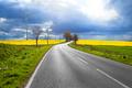 Sunny road - PhotoDune Item for Sale