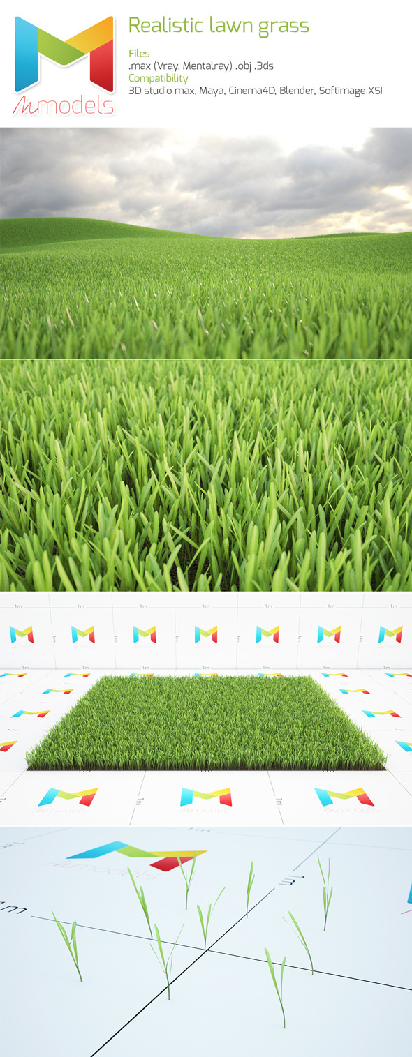 Realistic Lawn - 3DOcean Item for Sale