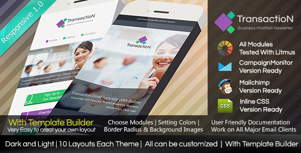 ThemeForest TRANSACTION Responsive Email With Builder 7956614