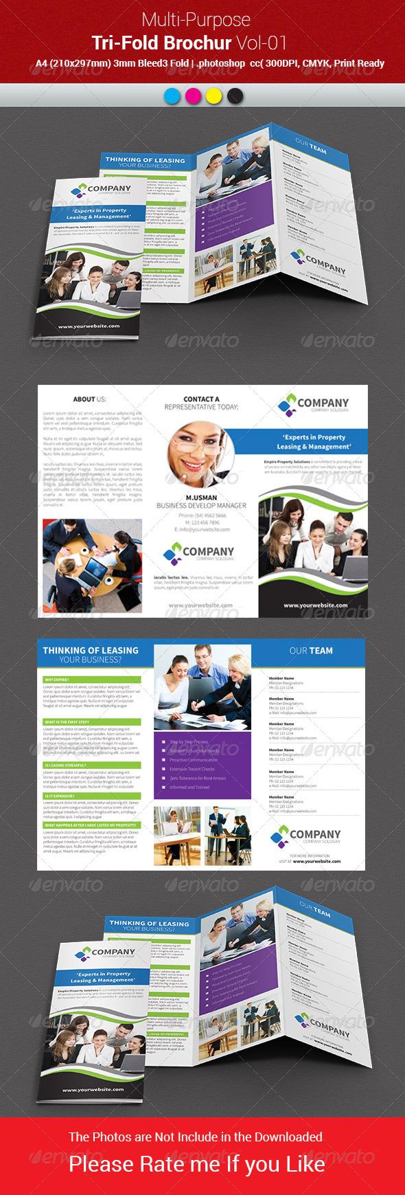 GraphicRiver Multipurpose Business Tri-Fold Brochure Vol-01 7956751