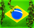 Brasil Flag Backdrop Image - PhotoDune Item for Sale