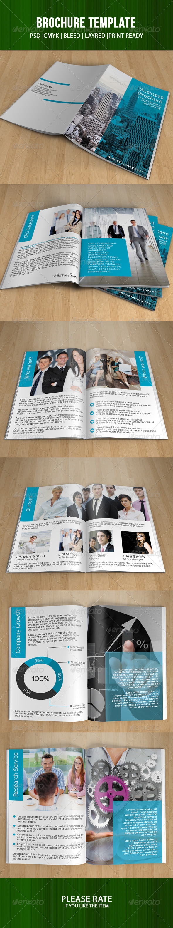 GraphicRiver Bifold Business Brochure-V46 7960581