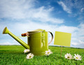 Watering can with daisies - PhotoDune Item for Sale