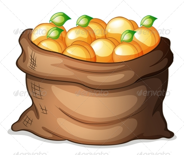 GraphicRiver Sack of Oranges 7969326