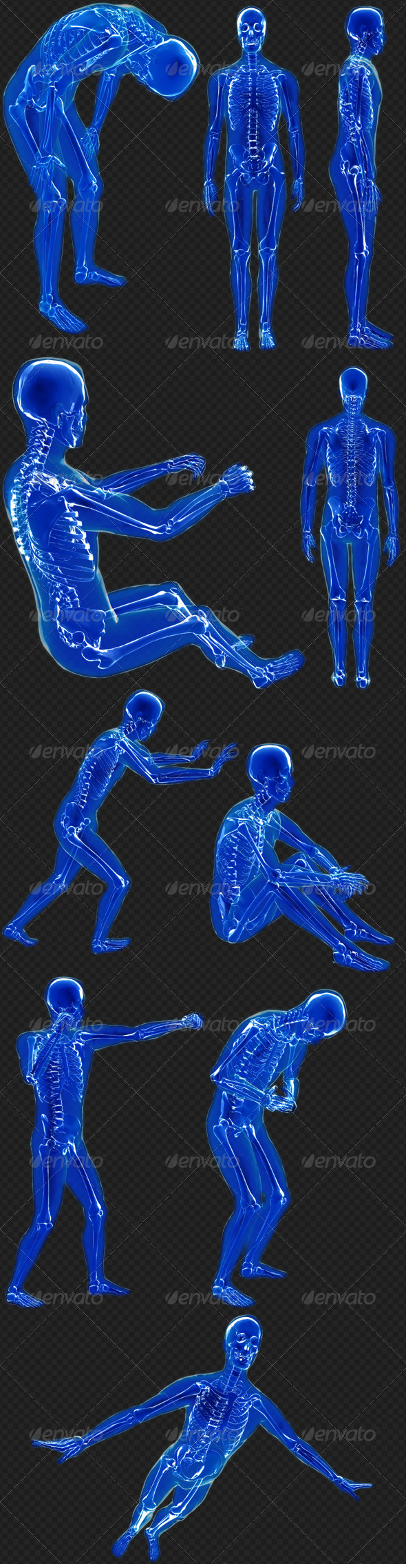 GraphicRiver Human X-Ray 10 Poses Pack 7973042