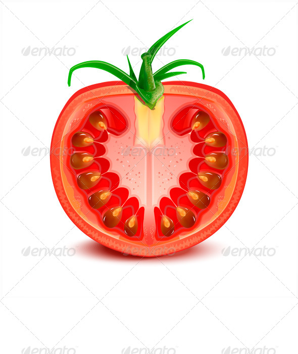 GraphicRiver Tomato Slice 7973153