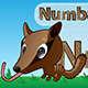 Cartoon Numbat - GraphicRiver Item for Sale