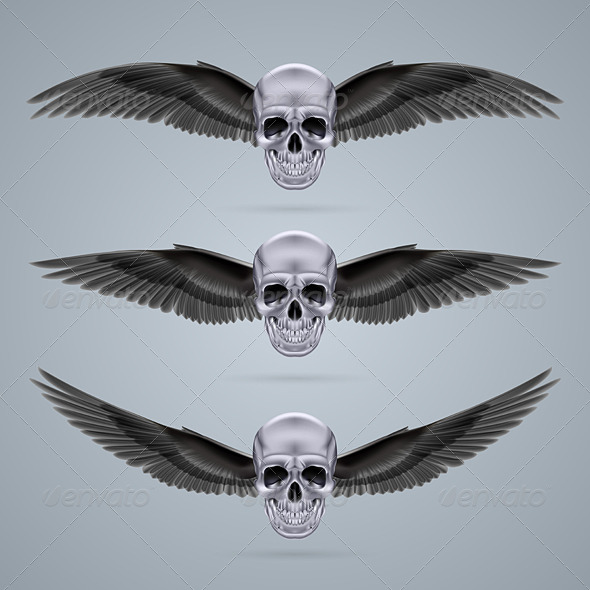 GraphicRiver Skull with Wings 7974347