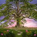 Enchanted Garden - PhotoDune Item for Sale