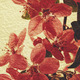 Oriental grungy floral backgrounds with real rice paper texture - PhotoDune Item for Sale