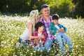 Family on the meadow - PhotoDune Item for Sale