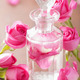 perfume bottle and pink rose flowers. spa aromatherapy - PhotoDune Item for Sale
