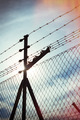 Fence netting in backlighting - PhotoDune Item for Sale