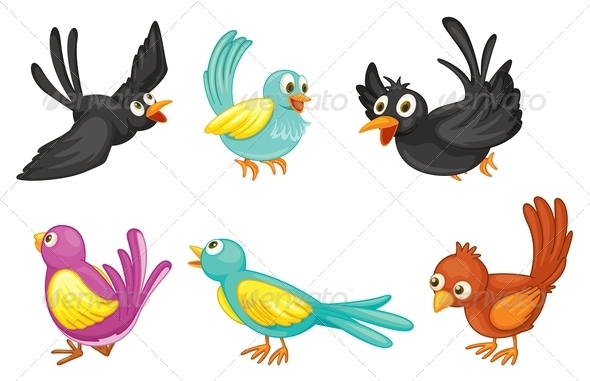 GraphicRiver Six Colorful Birds 7988227