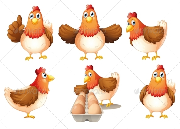GraphicRiver A Group of Fat Hens 7988553