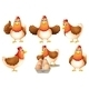 A Group of Fat Hens - GraphicRiver Item for Sale