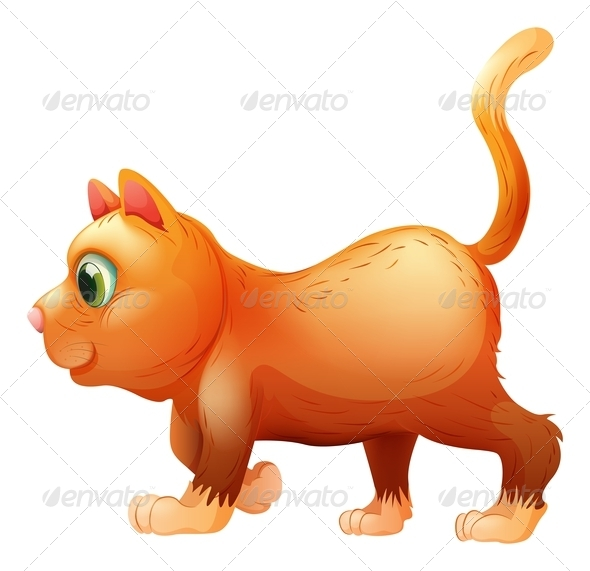 GraphicRiver A Sideview of a Fat Cat 7988565