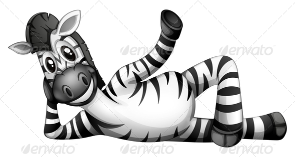GraphicRiver Zebra Resting 7989158
