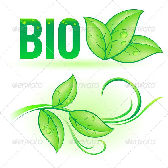 GraphicRiver Bio Leaf Elements 7994430