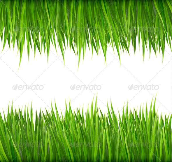 GraphicRiver Nature Background with Green Grass 7994958