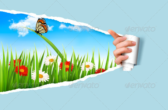 GraphicRiver Summer Background with Flowers Grass and a Ladybug 7994993