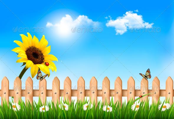 GraphicRiver Summer Garden with Sunflower 7995002