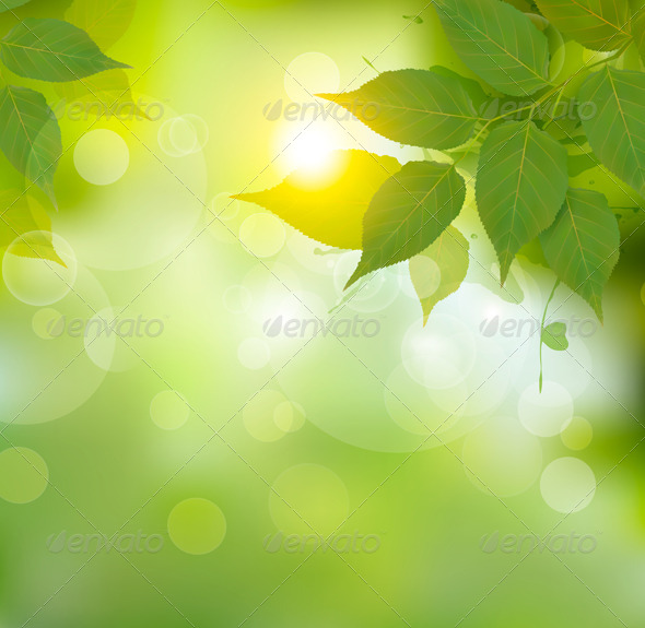 GraphicRiver Nature Background with Green Spring Leaves 7995009