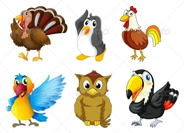 GraphicRiver Set of Different Birds 7995282