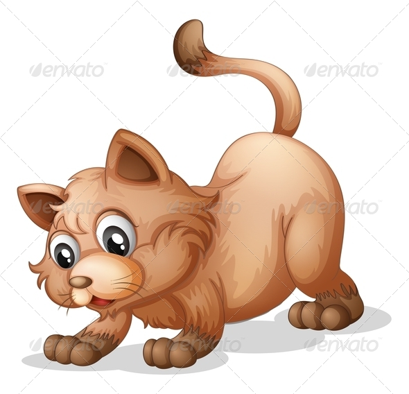 GraphicRiver A Brown Cat 7995361