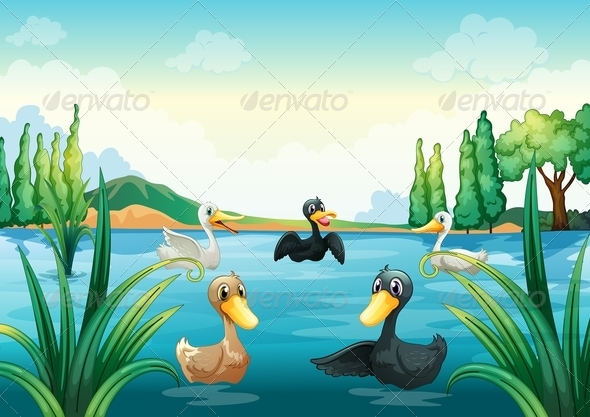 GraphicRiver Group of Aquatic Birds at the Pond 7995413