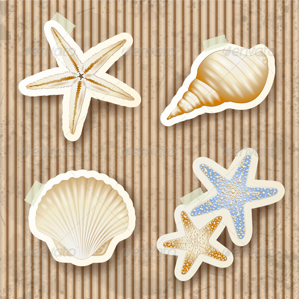 GraphicRiver Seashells on Cardboard Background 7996641