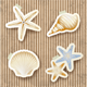 Seashells on Cardboard Background - GraphicRiver Item for Sale