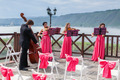 Quartet of Classical Musicians Playing at a Wedding - PhotoDune Item for Sale