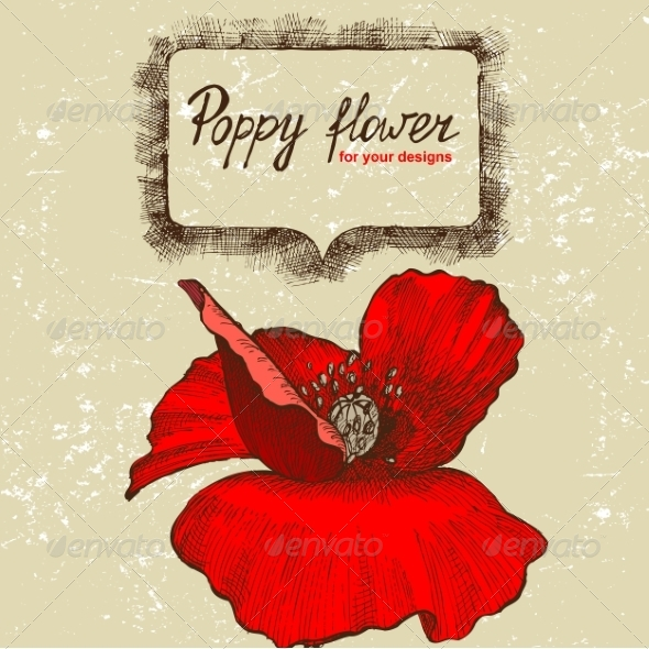 GraphicRiver Background with Hand Drawn Poppy Flower 7999764