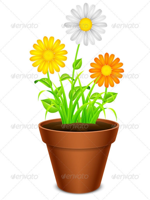 GraphicRiver Flowers in a Pot 8000214