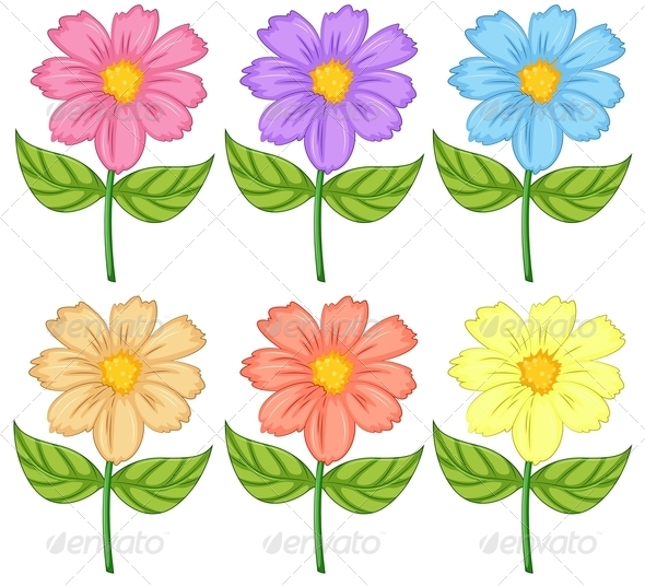 GraphicRiver Six Colorful Flowers 8002346