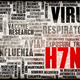H7N7 - PhotoDune Item for Sale