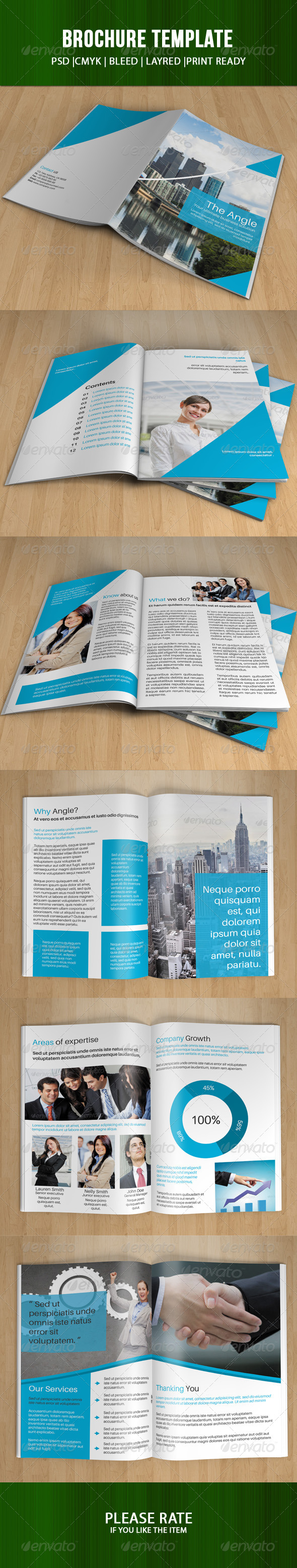 GraphicRiver Corporate Brochure-V59 8009583
