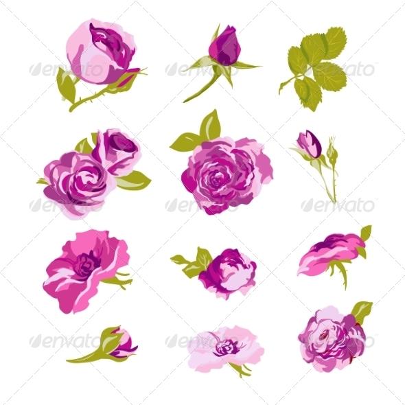 GraphicRiver Set of Floral Design Elements Flower Collection 8011199