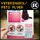 Pet Shop / Veterinary Centre Flyer  - GraphicRiver Item for Sale