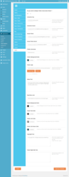 11_footer_theme_options.__thumbnail