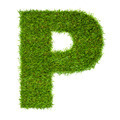 Letter P made of green grass isolated on white - PhotoDune Item for Sale
