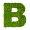Letter B made of green grass isolated on white - PhotoDune Item for Sale