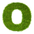 Letter O made of green grass isolated on white - PhotoDune Item for Sale