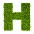 Letter H made of green grass isolated on white - PhotoDune Item for Sale