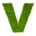 Letter V made of green grass isolated on white - PhotoDune Item for Sale