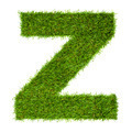 Letter Z made of green grass isolated on white - PhotoDune Item for Sale