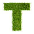 Letter T made of green grass isolated on white - PhotoDune Item for Sale