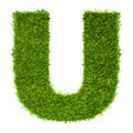 Letter U made of green grass isolated on white - PhotoDune Item for Sale